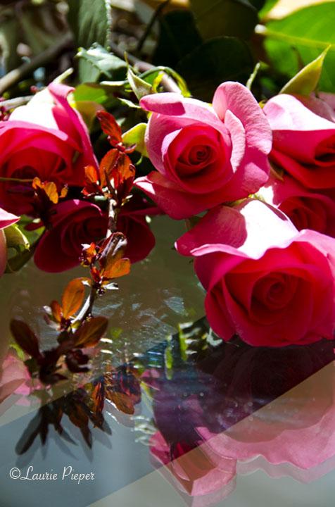 RosesWithSandCherryBranchesLG